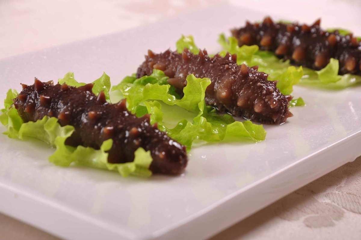 pepinos de mar comestibles