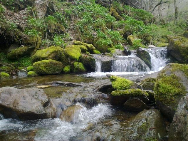 cascada valle de laciana