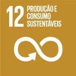 Assegurar padrões de produção e de consumo sustentáveis