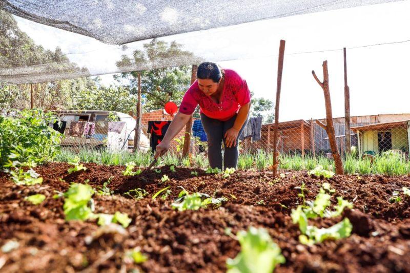 IMG-20210809-WA0069 El Gobierno casi triplicó la inversión destinada a productores agrícolas de Misiones, a través de la EBY