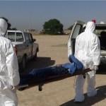 Four more Congo Fever cases reported