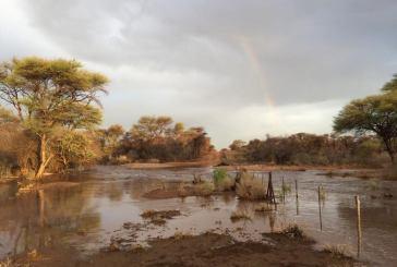 Streams of water run as good rains continue