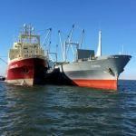 IUU fishing is costing the Namibian economy billions