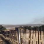 Locust swarms invade Otjozondjupa region
