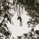 Boy commits suicide with tie