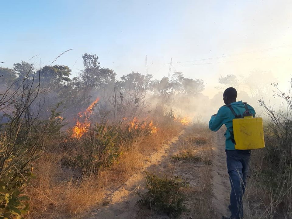 national fire management programme Ministry Environment Forestry Tourism MEFT preventing
