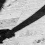 More child rapists arrested