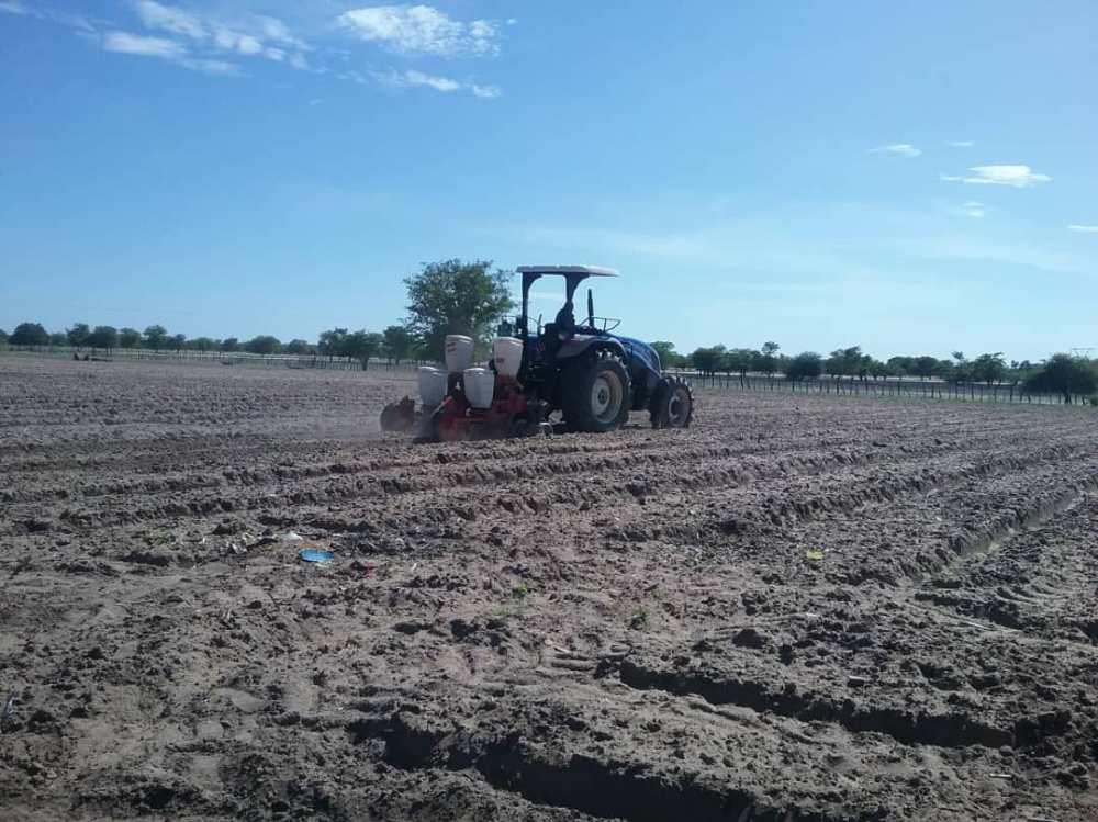 Community pleads tractors Omusati Region farmers government tractors regions