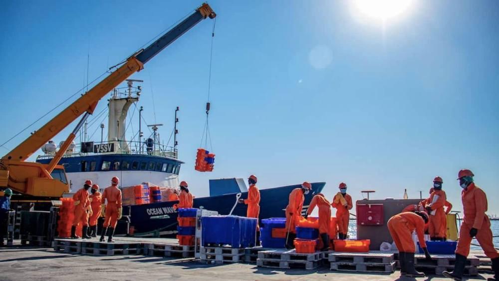 Fishcor urgently addressing challenges National Fishing Corporation Namibia