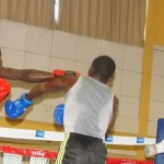 Bulelo fosters new talent