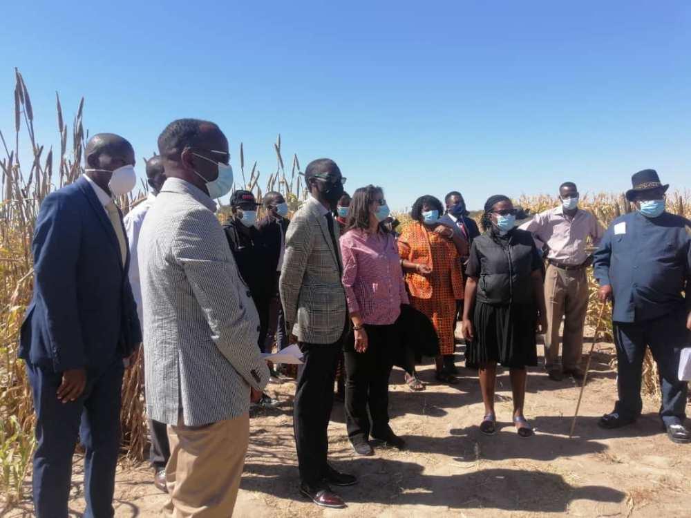 UNAM seed project University Namibia Agronomic Board NAB seeds farmers produce food