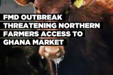FMD outbreak threatening northern farmers access to Ghana market