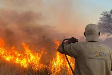Thousands of hectares of grazing were destroyed by fire