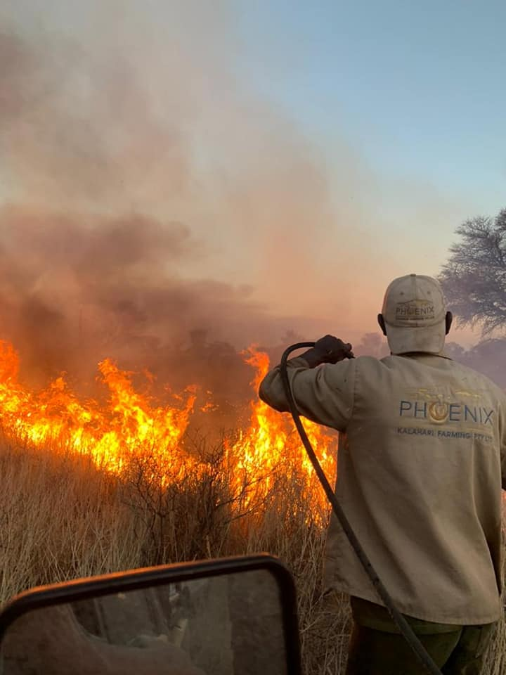 destroyed farmers southeastern Namibia grass fire hectares grazing destroyed