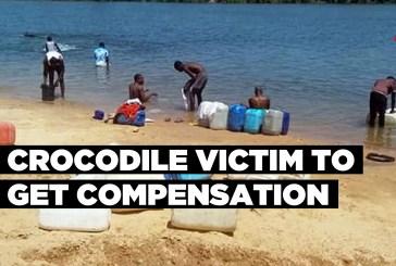 Crocodile victim to get compensation