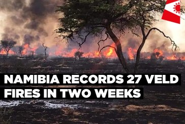 Namibia records 27 veld fires in two weeks