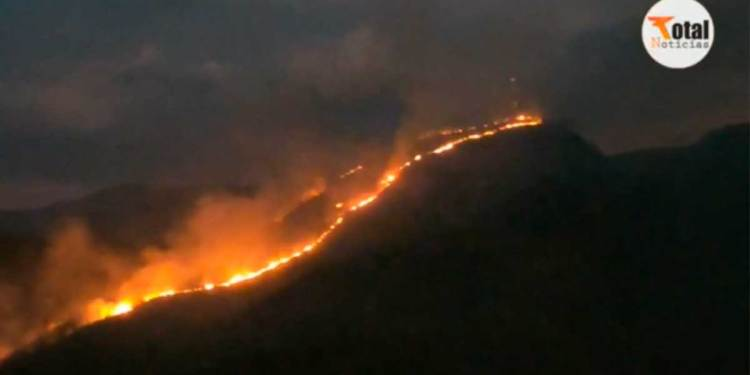 Se reporta incendio forestal de gran proporción en Chanchamayo