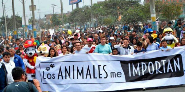 caminata en contra del maltrato animal convocó a mas de 8 mil vecinos