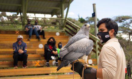 Zoológico de Quito reabrirá sus puertas al público, luego de 110 días de cierre
