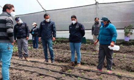42 familias de Cuyuja y Papallacta reciben invernaderos para la producción agrícola