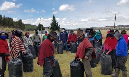 Gobierno entrega más ayuda a zonas de Chimborazo afectadas por ceniza volcánica