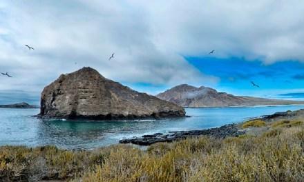 Pólizas de seguro para operadores turísticos con embarcaciones en galápagos