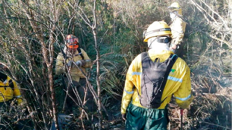 Cuatro áreas protegidas fueron afectadas por incendios forestales