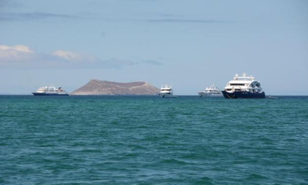 El pago de patentes turísticas en Galápagos se podrá realizar hasta el 31 de marzo de 2021