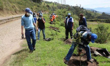 Quito conmemoró el Día de los Bosques y el Pawkar Raymi