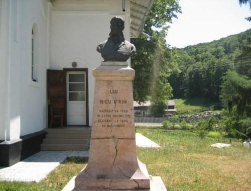 Bust Nicu Ifrim