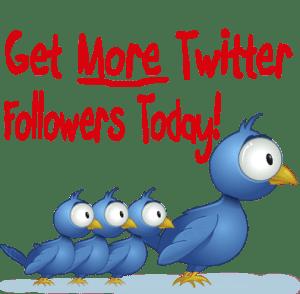 twitter-followers-wholesale