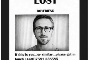 Gosling-2840836