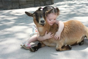 cute-girl-with-goat
