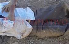 Fallece campesino en el centro de Mariscala