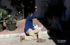 Francisco Toledo hace magia en el Día de Reyes