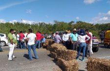 Sorgueros reclaman pagos y bloquean carretera en el Istmo