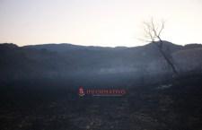 El cerro quedó gris, tras incendio de 100 hectáreas
