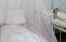 Mil 374 casos y 4 defunciones por dengue en Oaxaca