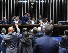 Senado rejeita decreto das armas do Presidente Jair Bolsonaro
