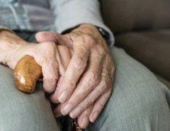 Estudo descobre proteína do cérebro que atrasa Alzheimer