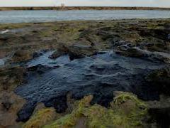 Marinha vai notificar 30 navios após triagem sobre manchas de óleo