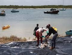 Governo estabelece pagamento a pescadores do NE até dezembro