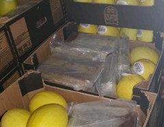 PF prende cinco e apreende 1,2 tonelada de cocaína em galpões e em meio a carga de melão na Grande Natal