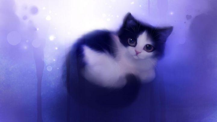 Background Ungu Kucing