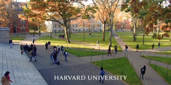 how to apply for harvard university