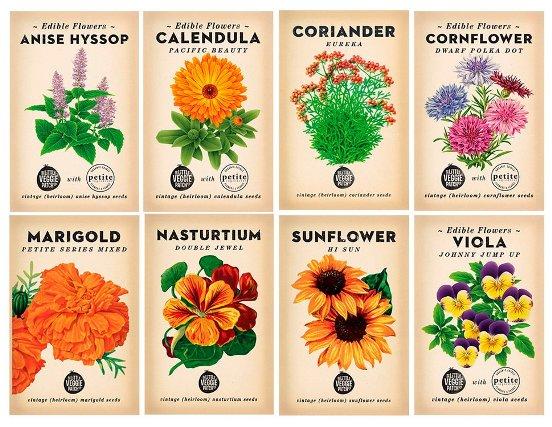 benih bunga sebagai hadiah