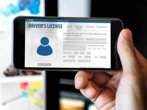 digital driver's licenses
