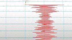 Warga Surabaya Rasakan Getaran Gempa Bumi yang Berpusat di Malang 6,7 SR