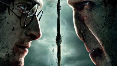 Photo of Harry Potter and Deathly Hallows Sticks to the Text