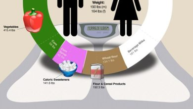 Photo of What Exactly Do We Eat/Consume Per Year? [infographic]